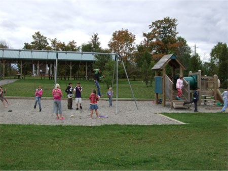 Playground - Swings and Play Structure